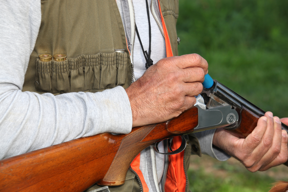 Best Hunting Rifles Reviewed and Rated in 2019   TheGearHunt