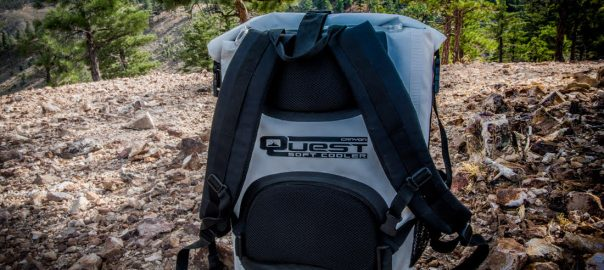 7d363669ded Best Backpack Coolers Reviewed in 2019