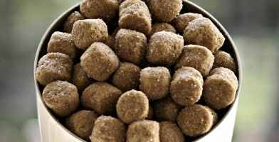 an in-depth review of the best dog foods in 2018