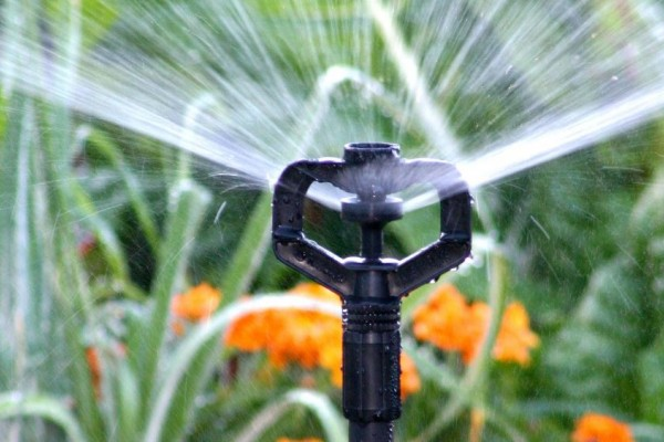 An in depth review of the best watering systems in 2018