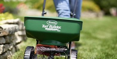 an in-depth review of the best seeders of 2019.