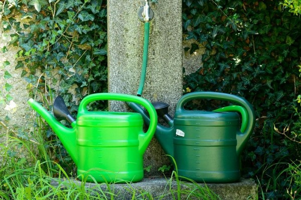 An in depth review of the best watering cans in 2018