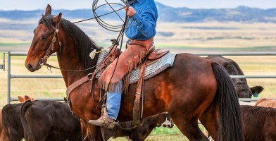 An in-depth review of the best straw cowboy hats