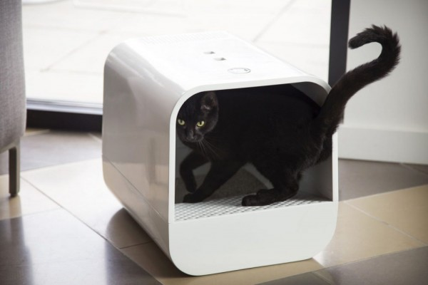 an in-depth review of the best litter boxes of 2018.