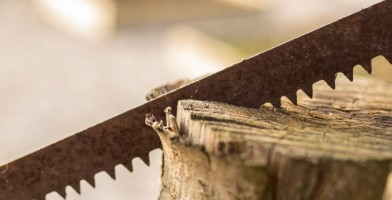an in-depth review of the best saws of 2018.