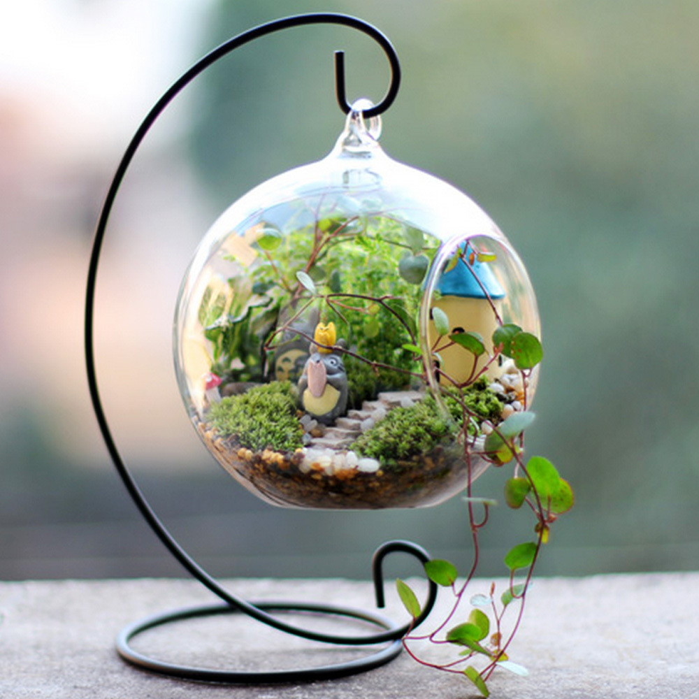 10 Best Terrariums Reviewed In 2019 Thegearhunt