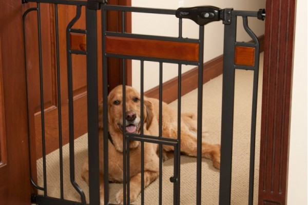 An in depth view of the best dog gates in 2018