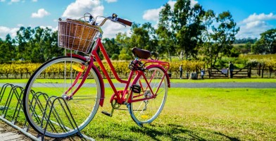 An In Depth Review of the Best Bike Baskets of 2019