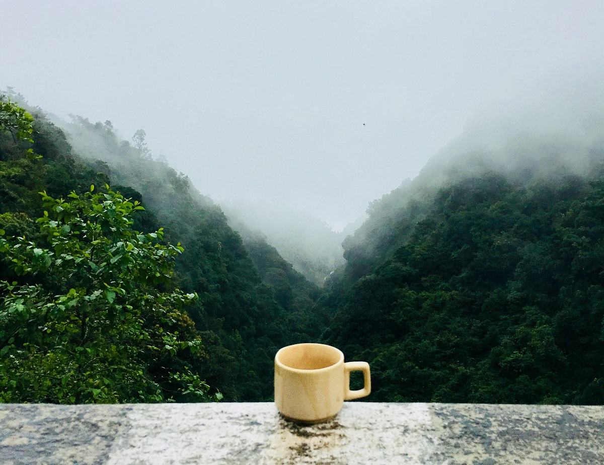 An in-depth guide for the best travel mugs available in 2019.
