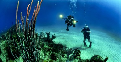 An in-depth review of the best dive computers available in 2018.