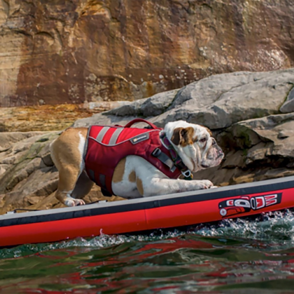 An in-depth review of the best dog life jackets in 2018
