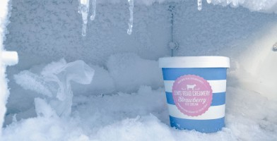 An in-depth review of the best upright freezers available in 2018.