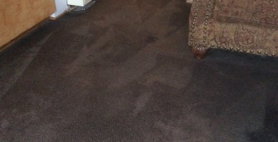 An in-depth review of the best carpet cleaners in 2018