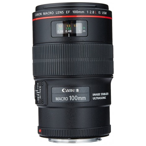 8.  Canon EF 100mm F/2.8L IS USM