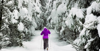 An in-depth review of the best cross country skis available in 2018.