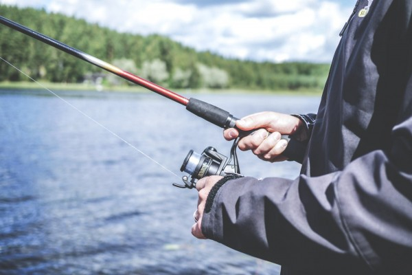 An in-depth review of the best fish attractants available in 2018.