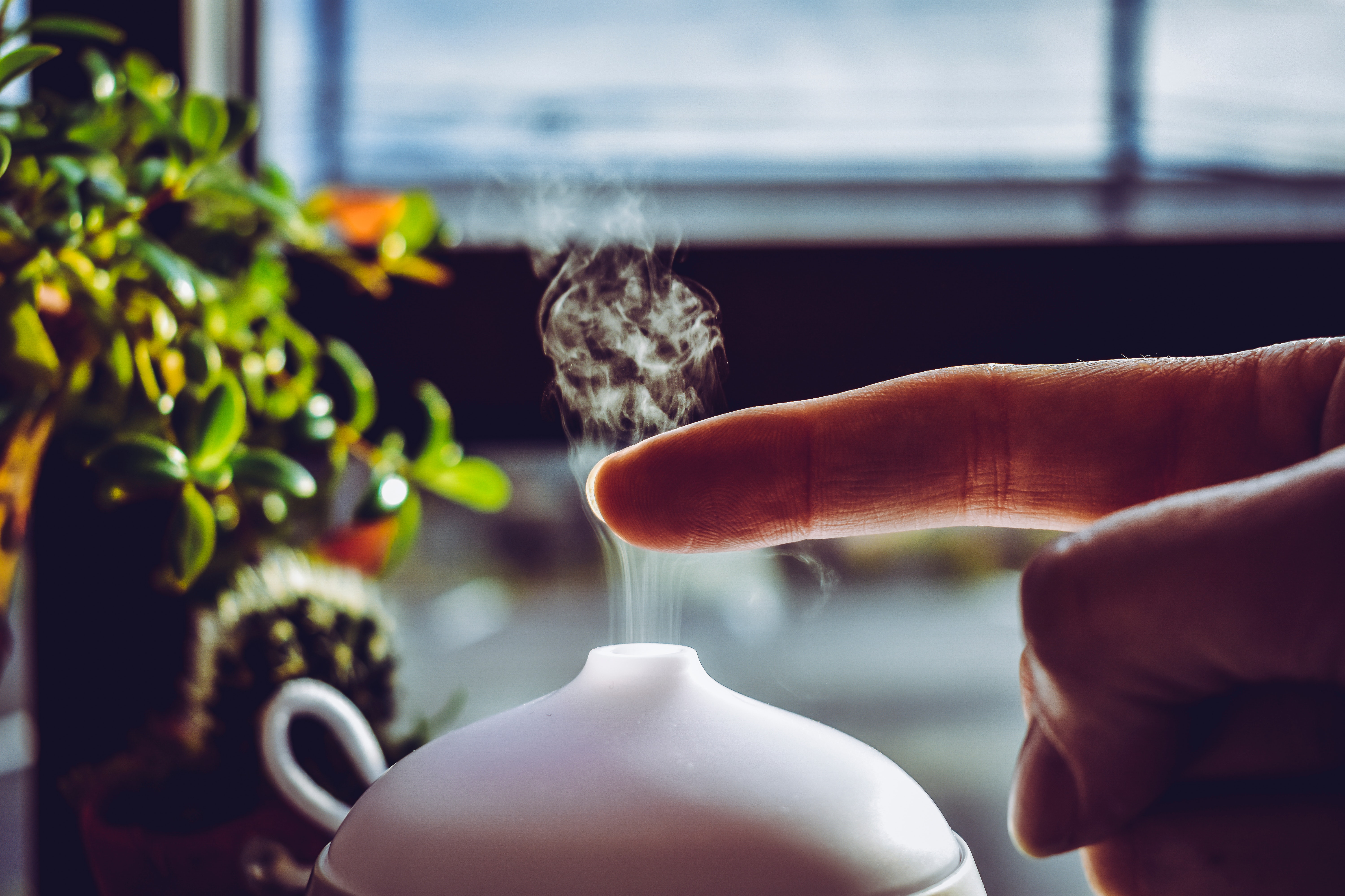 An in-depth review of the best essential oil diffusers available in 2019.