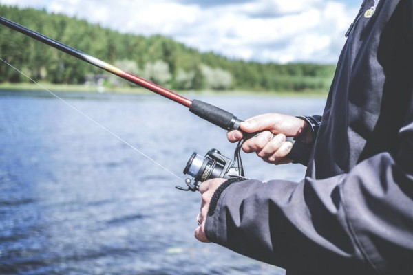 An in-depth review of the best crappie jigs available in 2019.