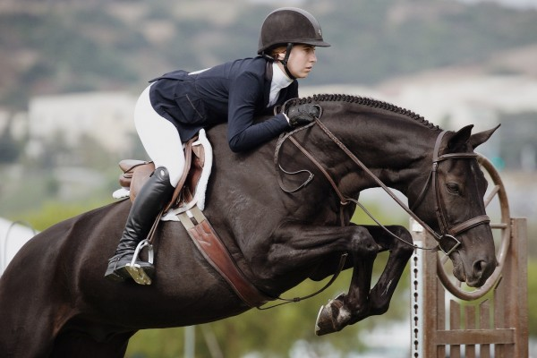 An in-depth review of the best english riding boots available in 2019.