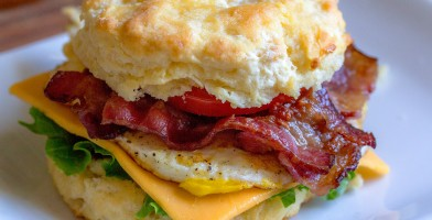 An in-depth review of the best breakfast sandwich makers available in 2019.