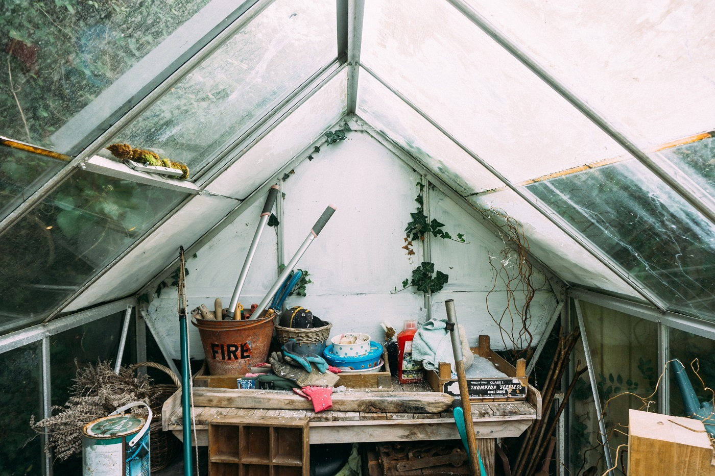 An in-depth review of the best greenhouse kits available in 2019.