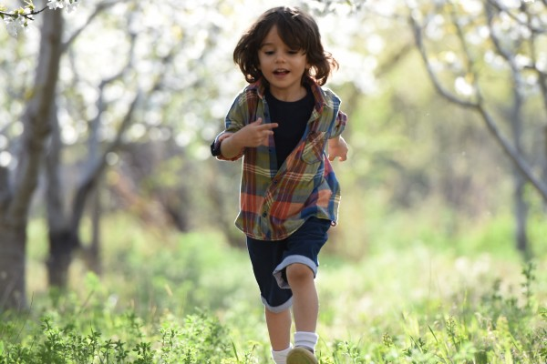 An in-depth review of the best exercise videos for kids available in 2019.