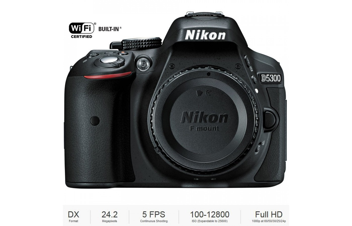 The Nikon D5300 is an advanced beginner camera.