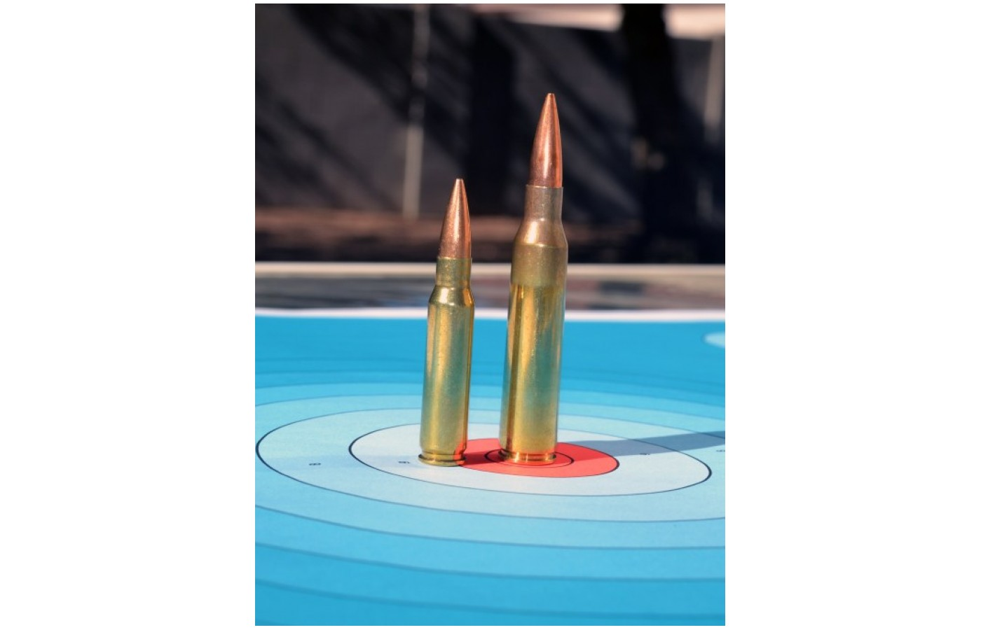 The Lapua .338 are some of the most powerful cartridges out there.