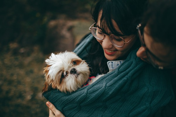 An in-depth review of the best gifts for dog lovers available in 2019.