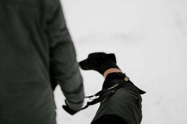 An in-depth review of the best dog coats available in 2019.