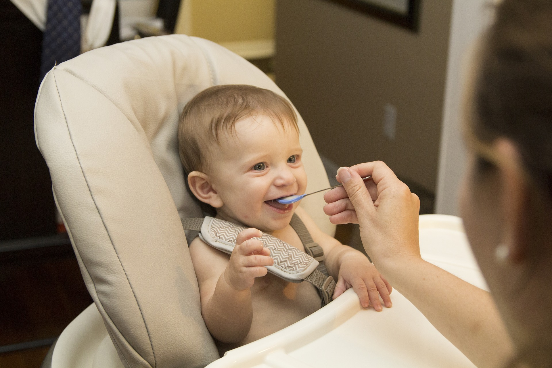 An in-depth review of the best baby food processors available in 2019.