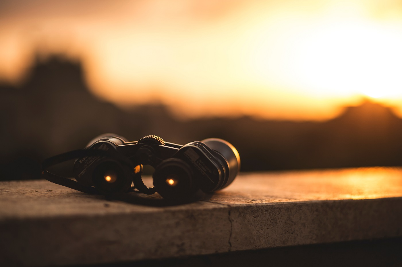 An in-depth review of the best Leica binoculars available in 2019.