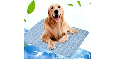 An in-depth review of the best cooling pads available in 2019.