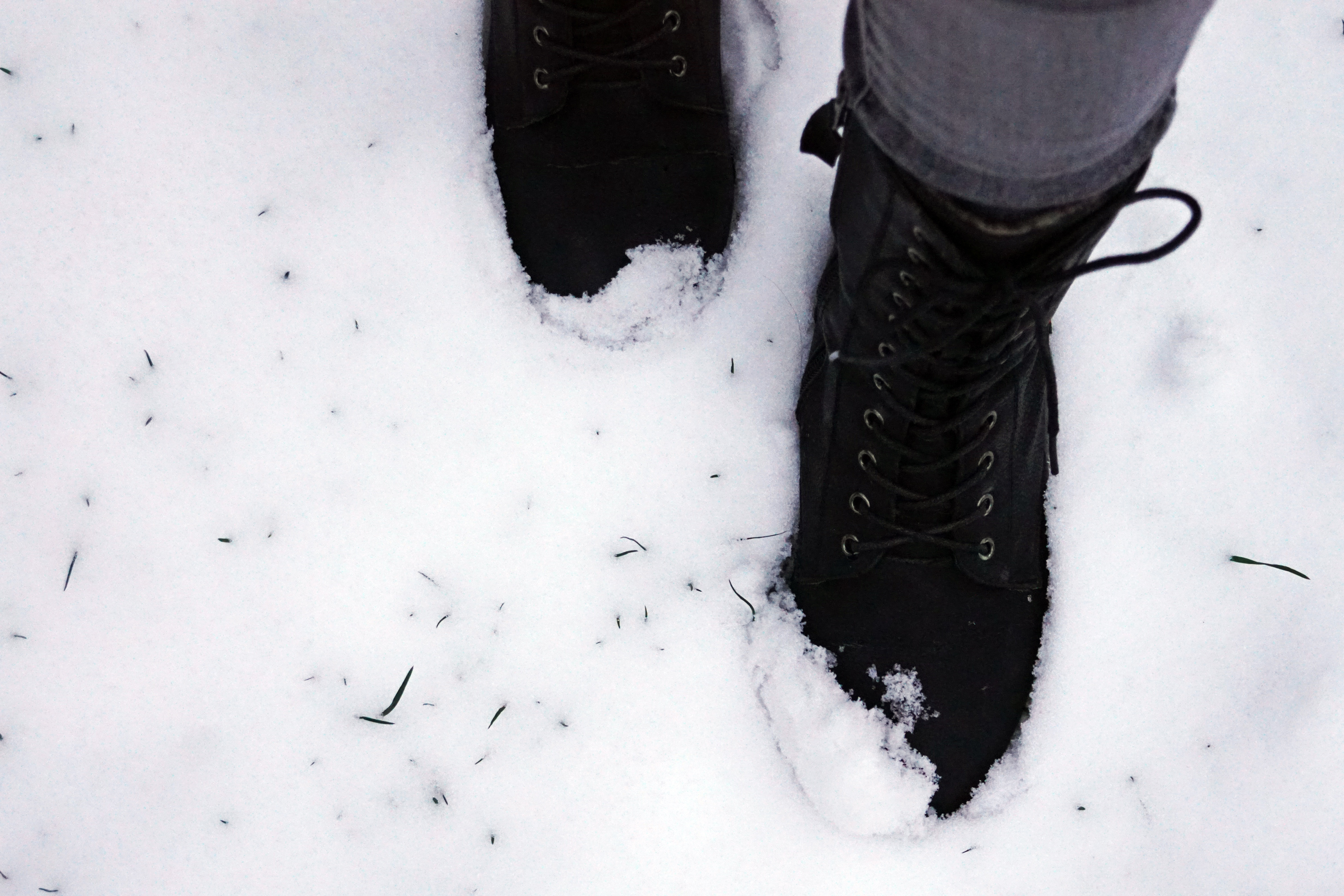 An in-depth review of the best pac boots available in 2019.