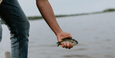 An in-depth review of the best bluegill lures available in 2019.