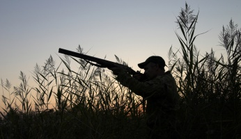 Everything you Need to Know about Getting a Hunting License