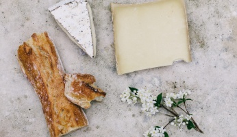 An in-depth review on how to make cheese.
