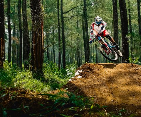 A complete guide on buying a mountain bike.