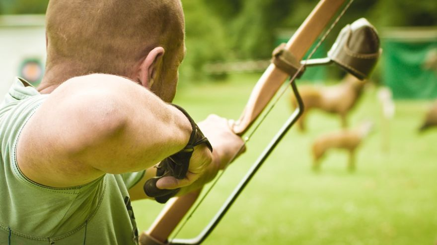 Why Every Bowhunter Should Shoot A Competitive 3D Event