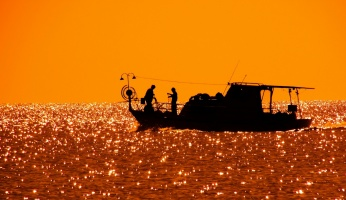 An in-depth guide on saltwater fishing for beginners.