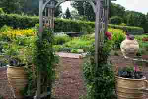 An in-depth review of the best garden trellises in 2018