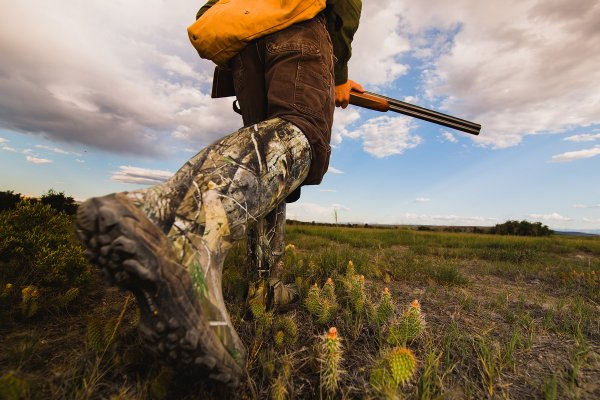 An in depth review of the best hunting boots in 2019