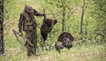 What Are the Best Hunting Organizations in the US?