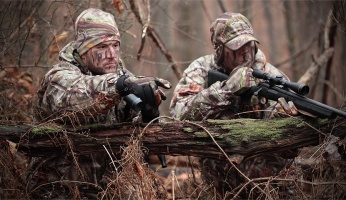 Prey Tracking and Hunting Strategies