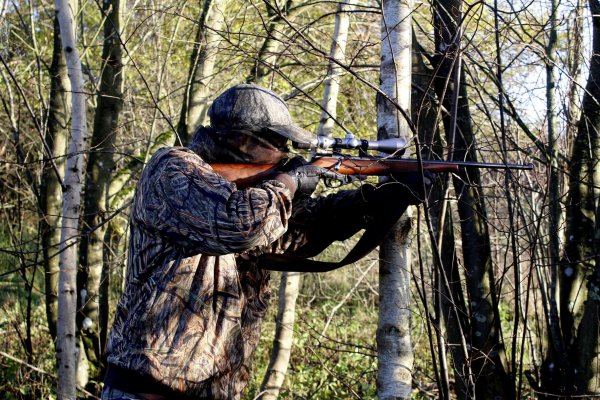 Best Hunting Rifles Reviewed and Rated