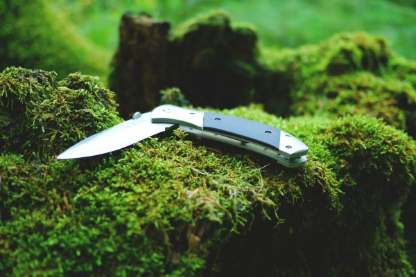 Best Folding Knives Reviewed and Compared