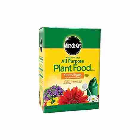 3. Miracle Gro All Purpose