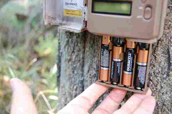 motion activated camera batteries