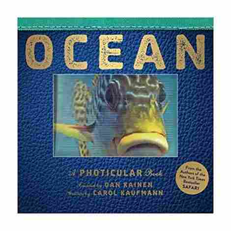2. Ocean: A Photicular book