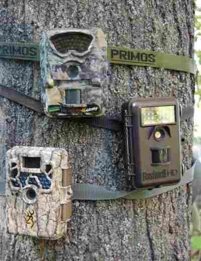 one or more trail cameras